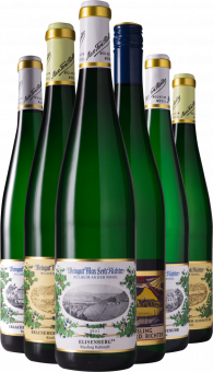 "Max Ferd. Richter ""Tradition & Modern"" Riesling Tasting Case"